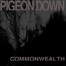 pigeon down_commonwealth_130